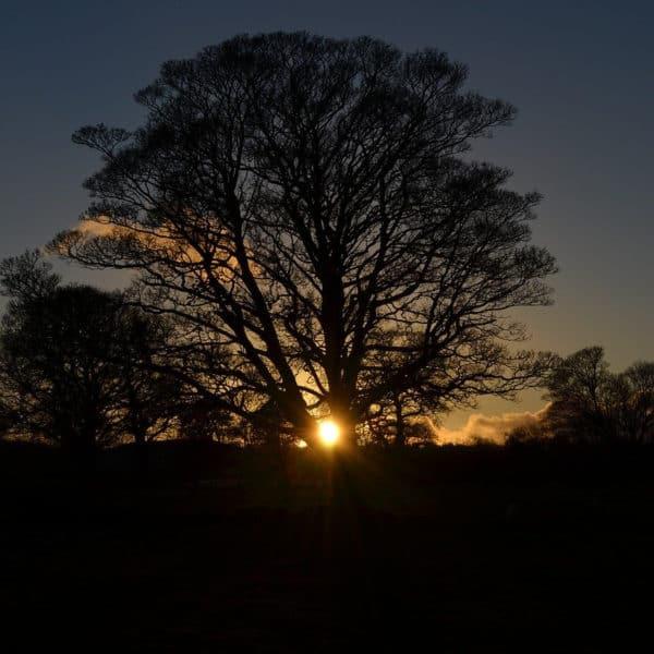 meditation-solstice-hiver-carre