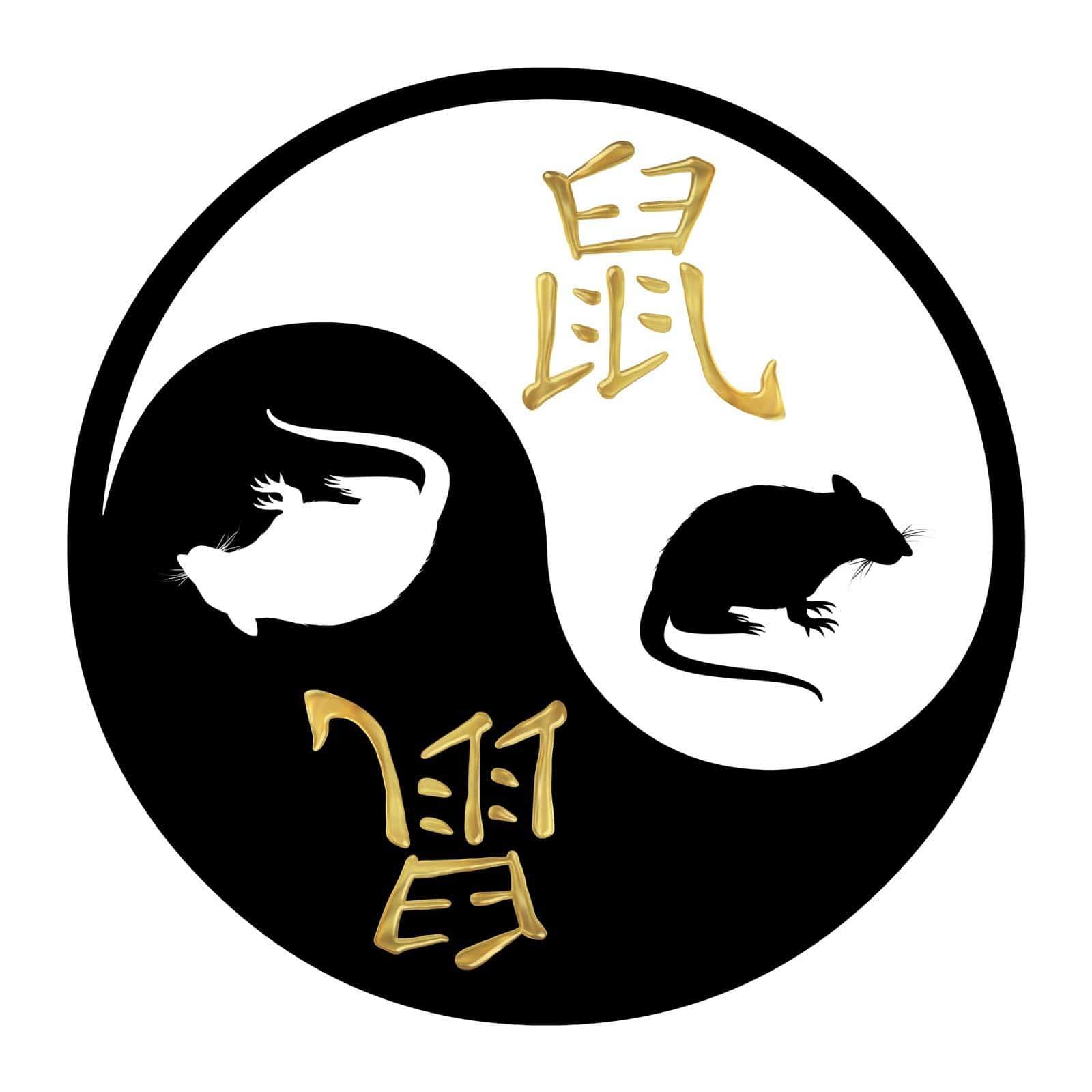 rat-metal-2020-yin-yang